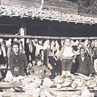 木下水産物沿革イメージ